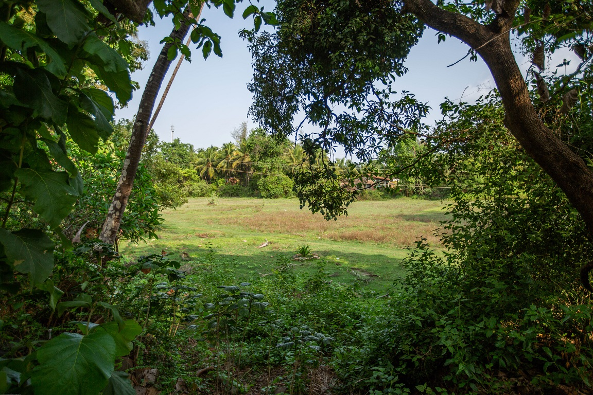 One Bedroom AC Apartment Patnem - Back Balcony View